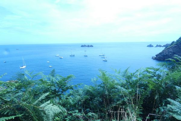 A short cruise to the Channel Islands